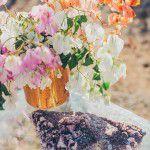 Bohemian-Desert-bridal-shower-Inspiration-7