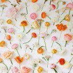 parede-de-flores (4)