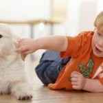 Cãezinhos recomendados para crianças