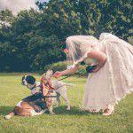 12 razões para seu cão estar no seu casamento
