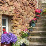 stairs-cottage-fife_JPG-150x150 Meus lírios...