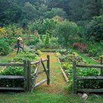 garden-1-0809-de-150x150 Cozinha bem iluminada