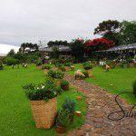 Casamento em Gramado – Rio Grande do Sul