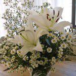 como-cuidar-das-flores2-150x150 Maquiagem, penteados e vestidos de noivas {Base Aliada}
