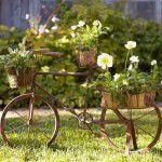 Enfeitando o jardim