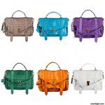 {Must have} Bolsa PS1