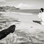 Concurso Ensaio de Casamento