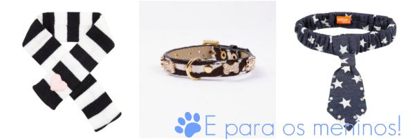 acessoriopetfashion3 Acessórios Fashion para Cães e Gatos
