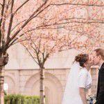 Um casamento com flor de cerejeira