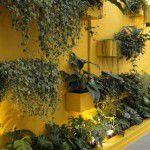 Jardim vertical: bonito e saudável