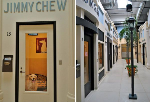 rodeodrive_barkley Hotel de luxo para pets