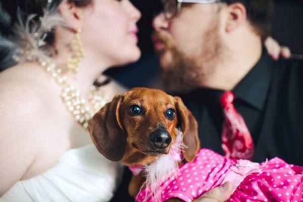 cachorro-no-casamento (12)