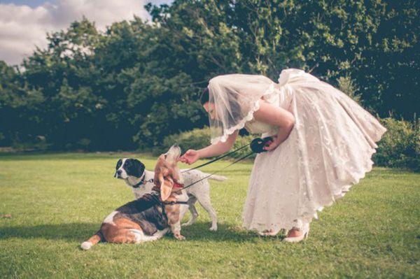 cachorro-no-casamento (6)