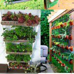 Como fazer a sua horta em casa