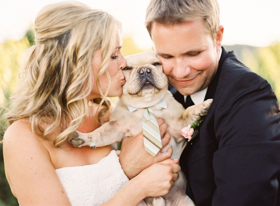Dogs-in-Weddings-4-Jordan-McBride1