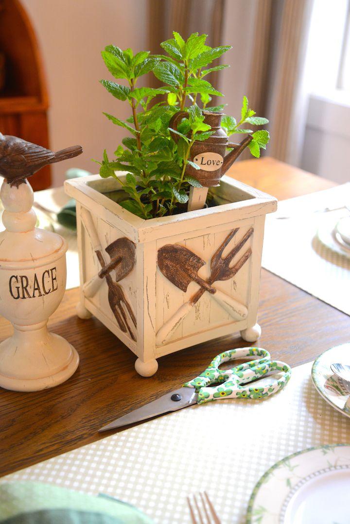 DSC_2417 Como ter sua própria horta em casa