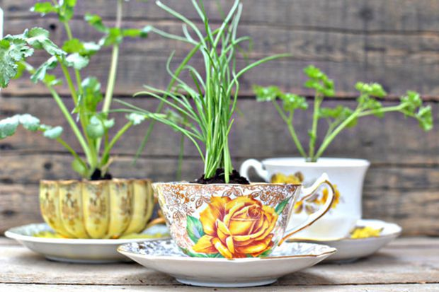 follow-the-colours-mini-horta-cozinha-caneca-01 Como ter sua própria horta em casa