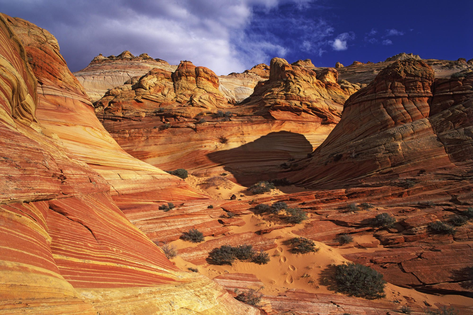 Slickrock formation, Coyote Buttes area of Paria Canyon, Vermillion Cliffs Wilderness Area, Arizona.
