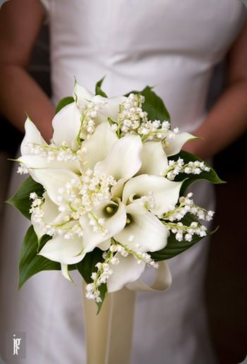44d0a8eb11cccef24dcd1acf5051d409 Significado das flores para buquê