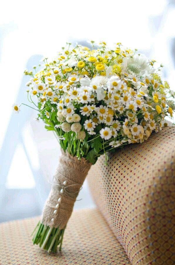 d6d4887cc5629d90c3a42163f38bdec5 Significado das flores para buquê