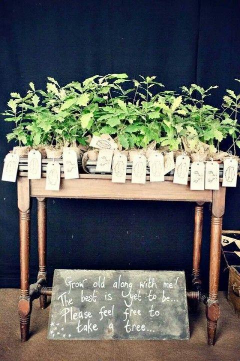 tree1 Inspirações lindas para um casamento ecologicamente correto