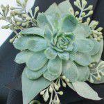 casamenteiras1-150x150 Aniversário Floral