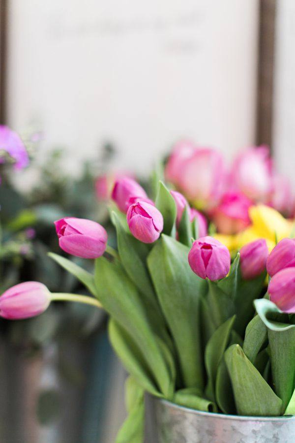 Brooke-Images Tulipas - Flores para decorar o seu casamento.