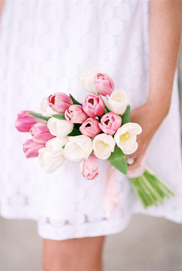 Lisa-Dolan-Photography Tulipas - Flores para decorar o seu casamento.