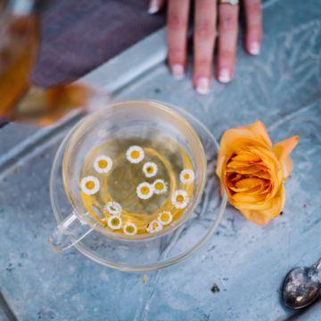 Tea-Bar-Wedding-Inspiration-by-Lauren-Love-Photography-and-Cheryl-Sullivan-Events-42-1-360x360 Inspiração orgânica do casamento: chás e folhagens