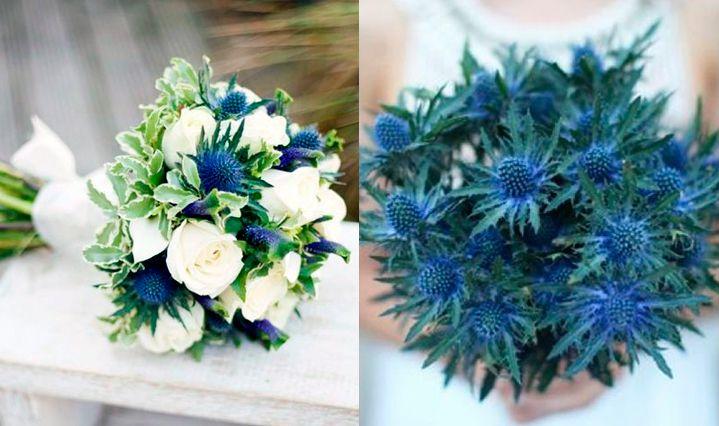 10-flores-exoticas-e-lindas_cardo_1a 10 flores exóticas e lindas na decoração do casamento