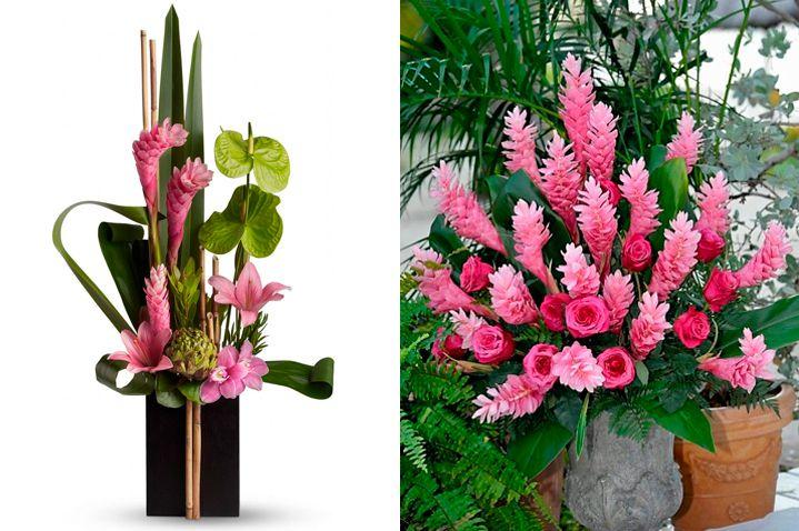 10-flores-exoticas-e-lindas_flor-de-gengibre_2 10 flores exóticas e lindas na decoração do casamento