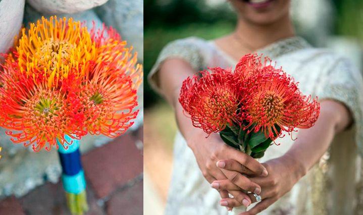 10-flores-exoticas-e-lindas_leucospermum_3 10 flores exóticas e lindas na decoração do casamento