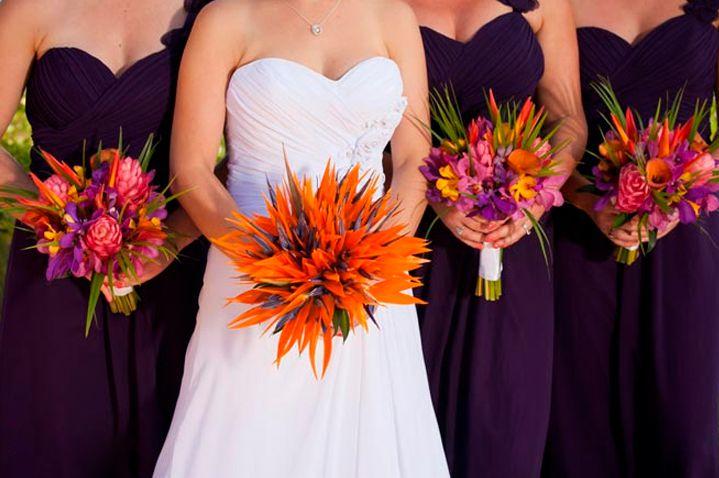 10-flores-exoticas-e-lindas_passaro-do-paraiso_1 10 flores exóticas e lindas na decoração do casamento