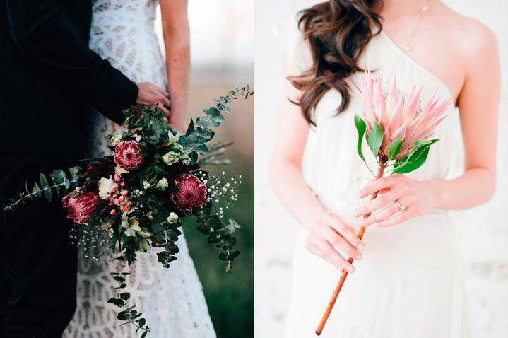 10-flores-exoticas-e-lindas_protea_2 10 flores exóticas e lindas na decoração do casamento