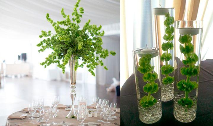 10-flores-exoticas-e-lindas_sinos-da-irlanda_2 10 flores exóticas e lindas na decoração do casamento