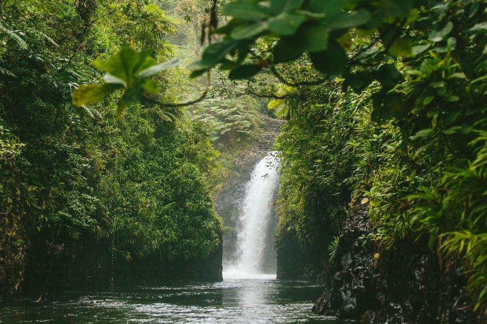 taveuni-waterfall2 Lua de mel incrível em Fiji | Roteiros de Lua de Mel