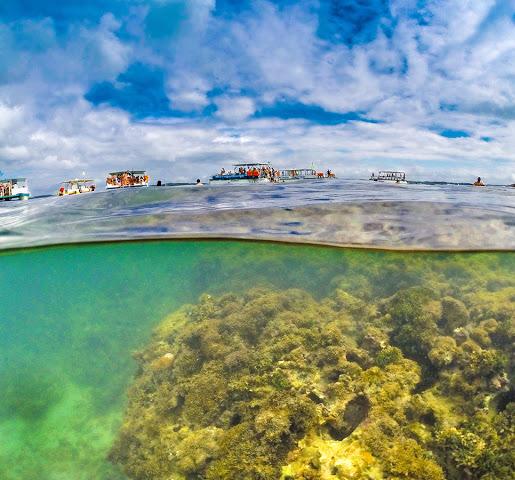 Maragogi-Alagoas Maragogi o Caribe Brasileiro | Lua de Mel