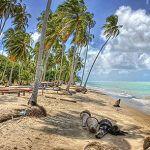 Maragogi o Caribe Brasileiro | Lua de Mel