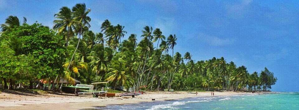 maragogi1 Maragogi o Caribe Brasileiro | Lua de Mel