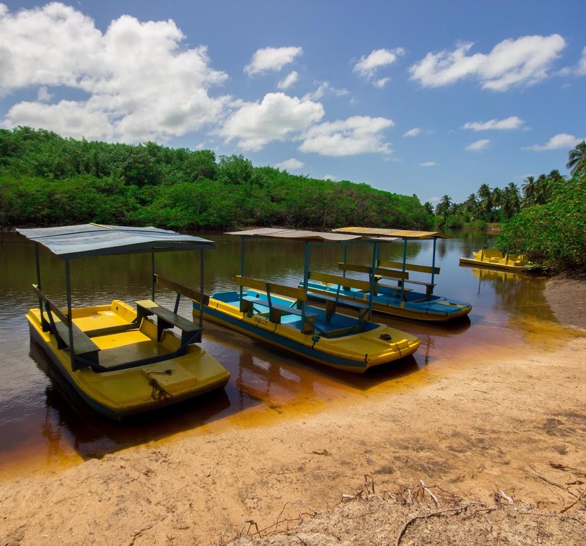 passeio-santuario-do-peixe-boi Maragogi o Caribe Brasileiro | Lua de Mel