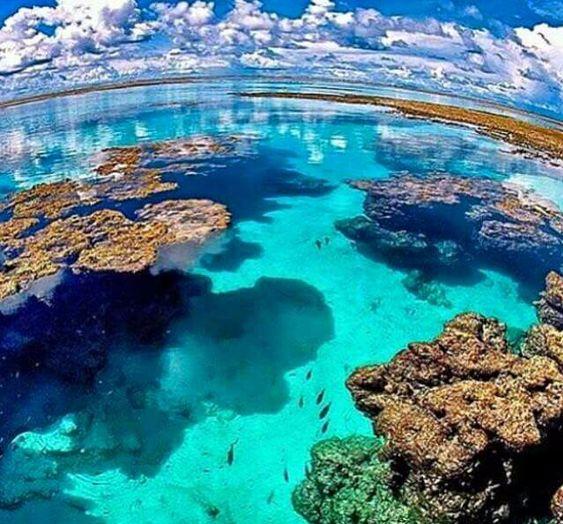 piscinas-naturais6 Maragogi o Caribe Brasileiro | Lua de Mel