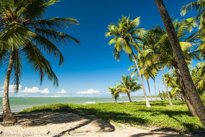 praia-de-barreiras-de-boqueirao Maragogi o Caribe Brasileiro | Lua de Mel