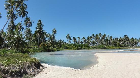 praia-de-burgalhau Maragogi o Caribe Brasileiro | Lua de Mel