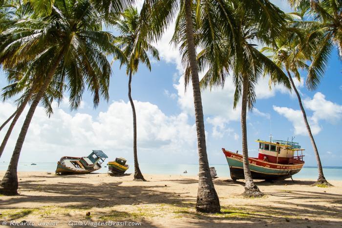 praia-de-sao-bento Maragogi o Caribe Brasileiro | Lua de Mel