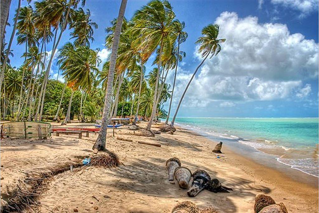 praia-do-peroba Maragogi o Caribe Brasileiro | Lua de Mel