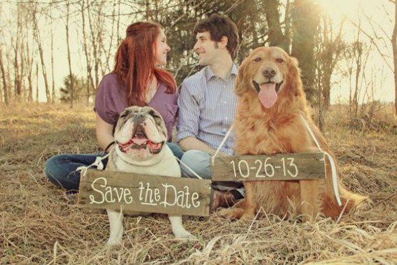 Psiu Noiva - Pets no Casamento: Dicas, Cuidados e Inspirações