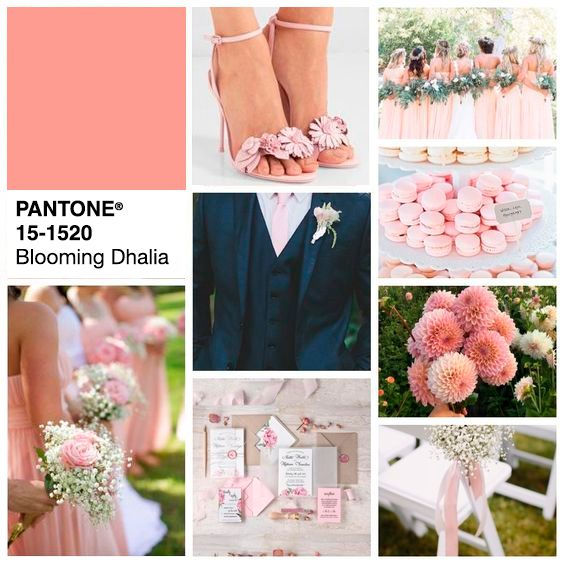 chamada_Blooming-Dahlia Pantone Color Trend Report 2018 | Tendência