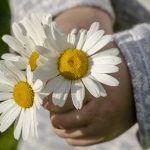 Mensagem de agradecimento para daminhas e pajens